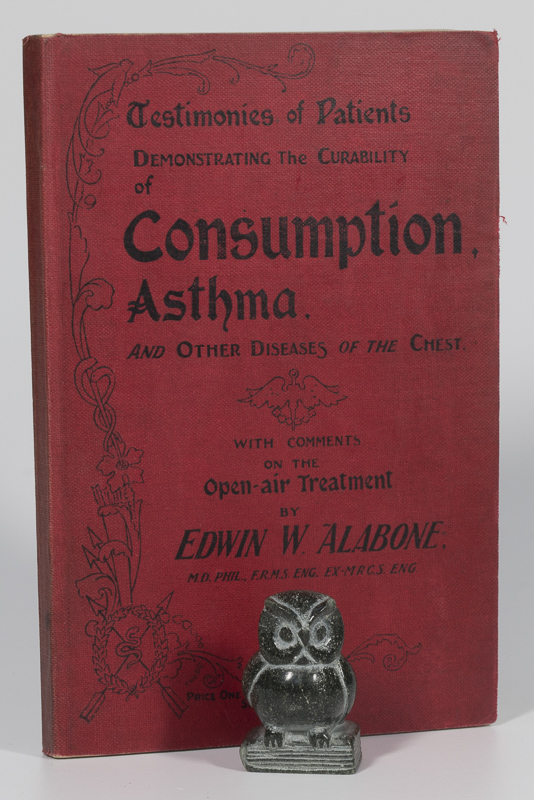 Curability Consumption, Asthma, and Other Diseases of the Chest.